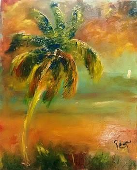 Patricia Taylor - Evening Beachlight