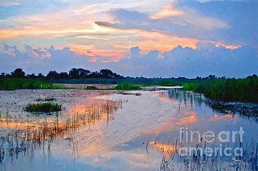 Evening in the Marsh by Tammy Lee Bradley