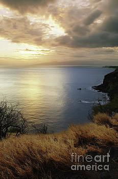 Charmian Vistaunet - Evening Light - West Maui