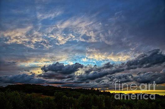 Evening Light by Billie-Jo Miller