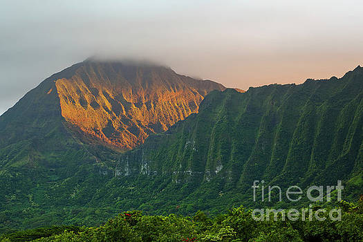 Evening Light on Ko'olau Mountains by Charmian Vistaunet