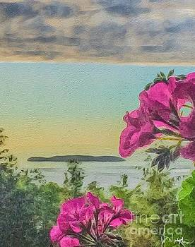 Islands of the Salish Sea by William Wyckoff