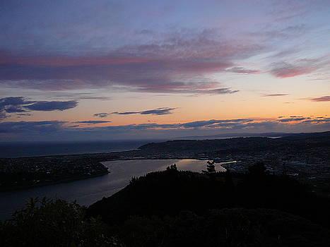Terry Perham - Evening Otago Harbour
