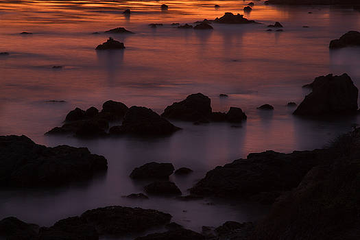 Evening Solitude by Roger Mullenhour