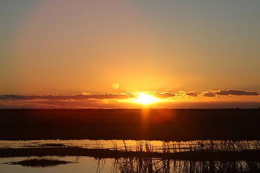 Bonnes Eyes Fine Art Photography - Everglade Sunset