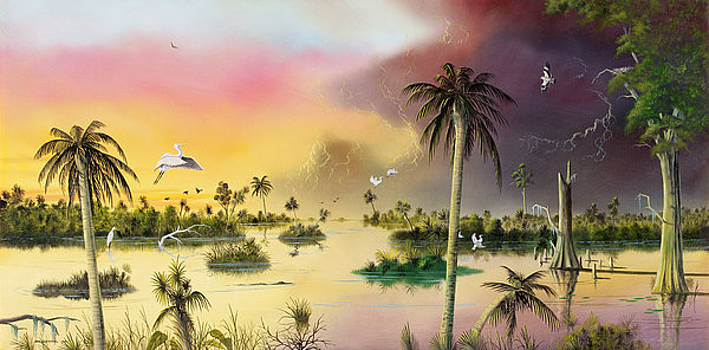 Everglades by Don Griffiths