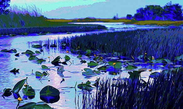 Everglades in Blue by Brad Bleich