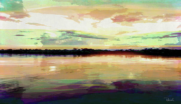 Everglades Lake at Sunset by Brad Bleich