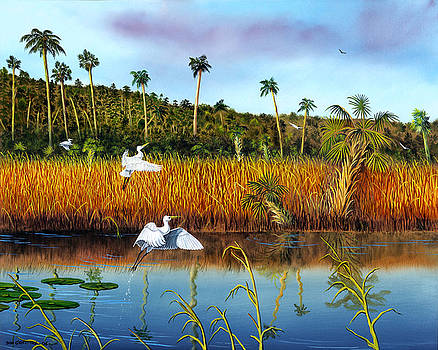 Everglades Sanctuary by Don Griffiths