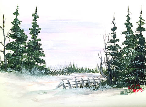 Evergreens in snow by Dorothy Maier