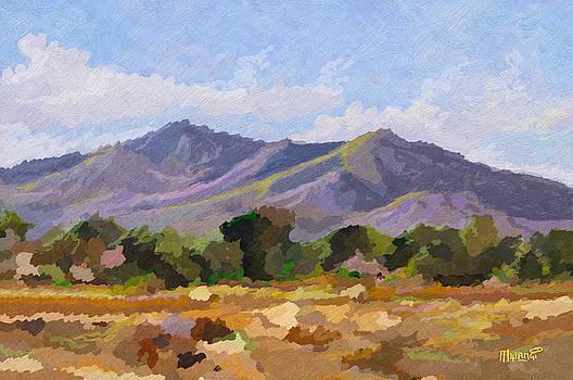 Everlasting hills by Anthony Mwangi