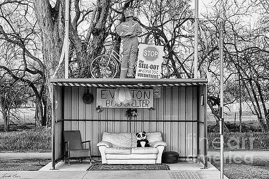 Everton Bus Shelter by Linda Lees