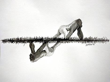 Evolution by Edwin Alverio