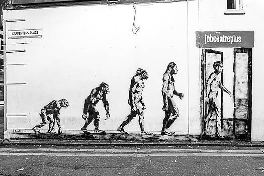 Evolution by James Evans