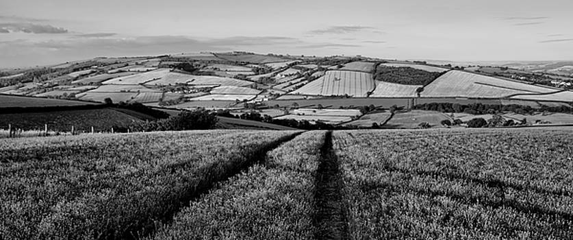 Exe valley in Devon by Pete Hemington