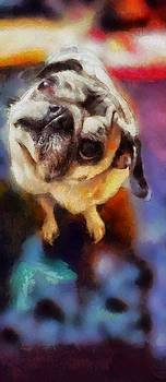 Existential Zues pug painting by Artist MendyZ quizzical confused dog looking with big eyes by MendyZ
