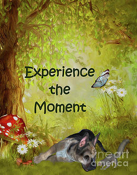 Experience The Moment Puppy Inspirational by Smilin Eyes  Treasures