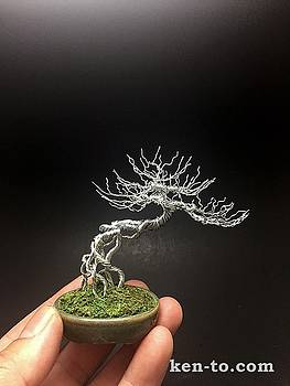 Exposed root wire bonsai tree sculpture by Ken To  by Ken To