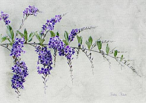 Extension of Nature by Barbara Chichester
