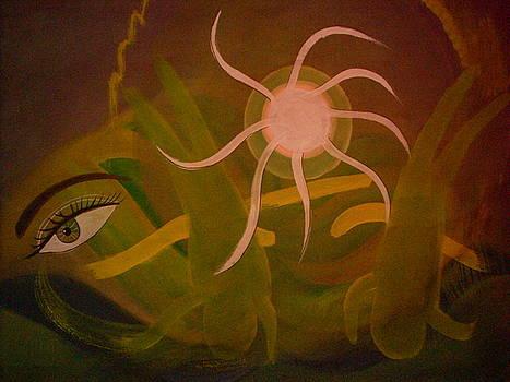 Eye in nature by Dhiraj Parashar