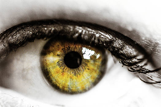 Eye Macro3 by Danielle Silveira