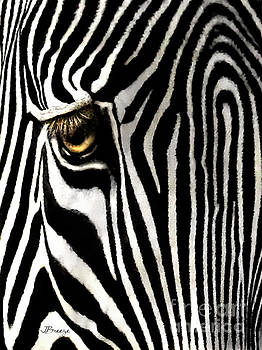 Eye of a Zebra by Jennie Breeze