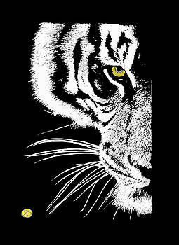 Eye of a tiger by Robert Breton