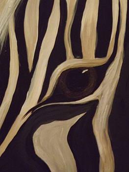 Eye of the Zebra by Vickie Roche