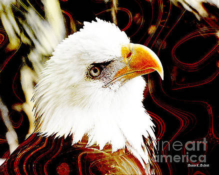 Eye On An Eagle by Sharon K Shubert
