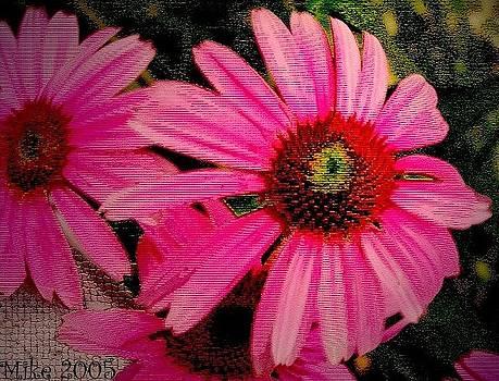 Eye Popper Flower by Mike Hazelwood