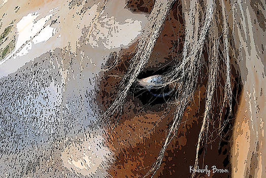 Eye See You by Kimberly  Brown
