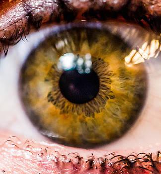 Eyeball Macro by Danielle Silveira