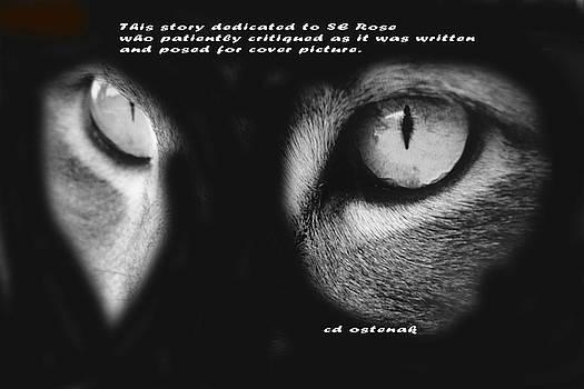 Eyes by CD Ostenak