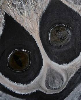Eyes of the Loris by Darkest Artist