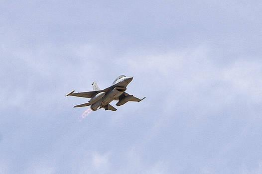 F-16 Flying Falcon by Shoal Hollingsworth