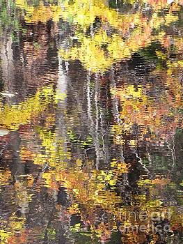 Fading Fall Water by Melissa Stoudt
