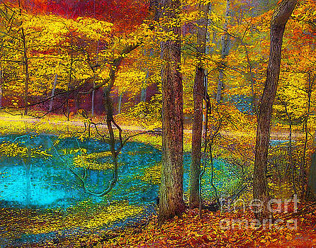 Fairy woods by Gina Signore