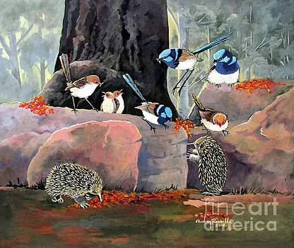 Fairy Wrens and Friends in the bush by Audrey Russill