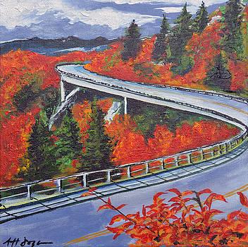 Fall - Blue Ridge Parkway by Nancy Hilliard Joyce