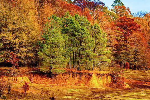 Barry Jones - Fall At Chickasaw Hill