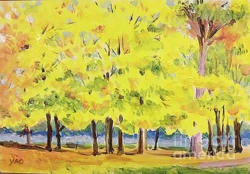 Fall at Dexter-Huron Park by Yoshiko Mishina