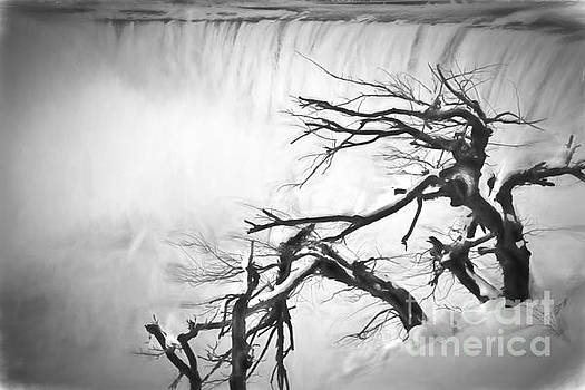 Storm  - Series I by Feryal Faye Berber