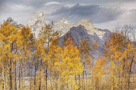 Fall At The Tetons  by Kelly Marquardt