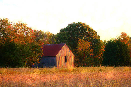 Fall Barn by Sheryl Bergman