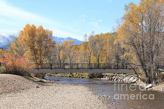 Fall By The Creek by Teresa Thomas