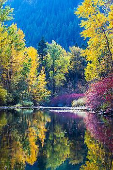 Fall color reflection by Hisao Mogi