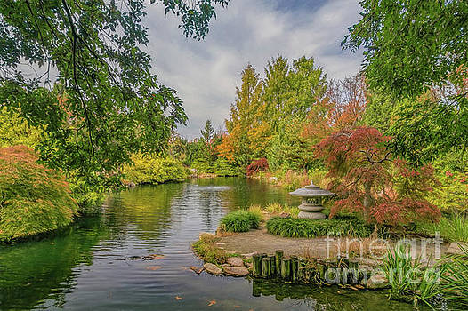 Fall Colors at Lewis Ginter Botanical Garden by Ava Reaves