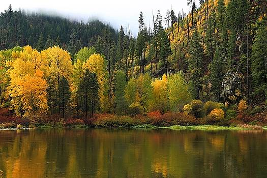 Fall Colors On The River 2 by Lynn Hopwood