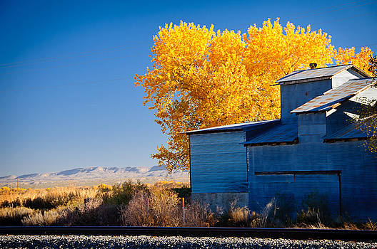 Fall Colors over Train Tracks, New Mexico by Preston Broadfoot