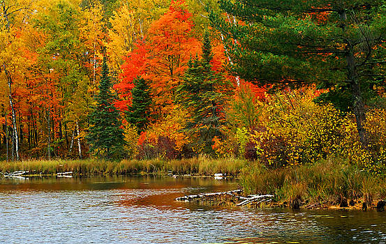 Fall Comes to Burns Lake by Bill Morgenstern